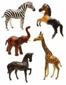 Hayvanlar biblo — Stok fotoğraf