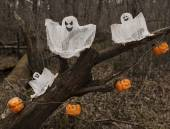Ghosts and pumpkins — Stock Photo