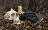 Human skull with evil candles and black book — Stock Photo