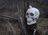 Human skull with burning candle — Stok fotoğraf