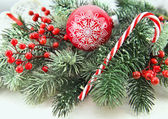 Red bauble with conifer — Stock Photo