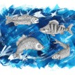 Saltwater and freshwater fish — Stock Photo #72666497