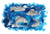 Saltwater and freshwater fish — Stock Photo