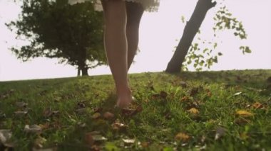 Legs of a young woman walking through leafy grass as the sun shines ahead of her — ストックビデオ