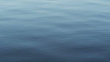Calm lake surface — Stock Video