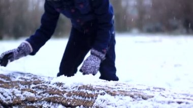 Girl collects the snow on a log — Stock Video