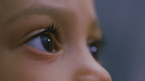 Eyes of a young child as she is engrossed in something on a screen — Vidéo
