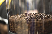 Coffee beans close up in a grinder — Φωτογραφία Αρχείου