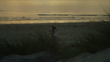 Empty sandy beach — Stock Video