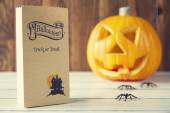 Halloween decoration — Stock Photo