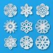 Paper snowflakes. Set 1 — Stock Vector #55277993