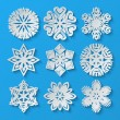 Paper snowflakes. Set 4 — Stock Vector #55277995