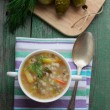 Soup pickle. Dish of Russian cuisine — Stock Photo #57480529