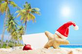 Starfish with Santa hat on beach — Stock Photo