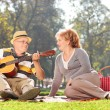 Senior man playing guitar to wife — Fotografia Stock  #68485435