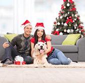 Couple celebrating Christmas with dog — Stockfoto