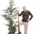 Senior man holding shovel and posing by a tree — Stock Photo #76476461