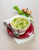 Chicken soup with leeks — Stock Photo