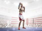 Professional boxer is training on the grand arena — Stock Photo