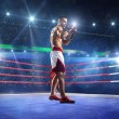 Professionl boxer is standing on the ring — Stock Photo #60036161