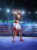 Professionl boxer is standing on the ring — Foto de Stock