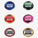Upgrade now button — Stock Vector #56385635