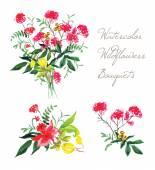 Watercolor spring wildflowers vector design set — Vetor de Stock