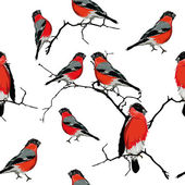 Bullfinches on the branch seamless pattern — Stock Vector