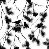 Birds on pine branches seamless print — Stock Vector