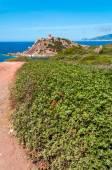 Landscape of coast of Sardinia — Stock fotografie