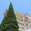 Cypress near the building. — Stock Photo #54628843