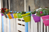 Colourful flower pots on a painted white fence on the street. — Stock Photo