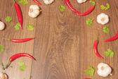 Chili, vitlök och koriander bakgrund — Stockfoto