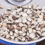 Small seashell — Stock Photo #65042715