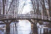 冬の橋 — ストック写真