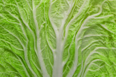 Texture of Chinese cabbage leaf — Stock Photo