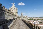 Catedral de évora — Foto Stock