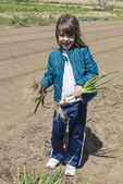 Littler girl collecting onions — Stock Photo