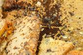 Honeycomb on a banana leaf in market — Stockfoto