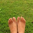 Foot on the green grass in the lawn. — Stock Photo #73080191