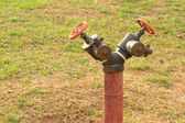 A water pipes on the green grass — Stock Photo