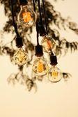 Vintage Lampen hängen auf dem Baum im Park — Stockfoto
