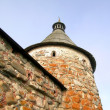 Tower of Solovetsky Monastery — Stock Photo #54923325