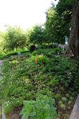 """Patriarchal garden"" in Vladimir — Stock Photo"
