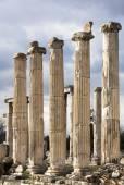 Aphrodisias Columns — Stock Photo
