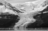 College Fjord Glacier — Stock Photo