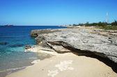 Grand Bahama Island Coastline — Stok fotoğraf