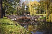 Stone bridge across the lake in a park in spring — Stock Photo