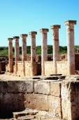 Roman Columns Paphos — Stock Photo