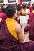 Monks Studying — Stock Photo